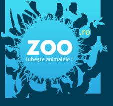 Zoo.ro - Iubeste animalele