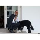 Bo, cel mai bun prieten al lui Barack Obama!