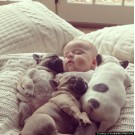 Caini si copii care dorm impreuna!