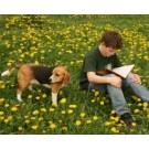 Cainii ajuta copiii sa citeasca