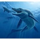 """Cercetatorii au descoperit un """"monstru marin"""" vechi de cateva milioane de ani"""