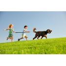 Copii cu autism ajutati de animalele de companie