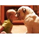 Copiii si animalele sunt cei mai buni prieteni