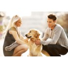 Cum te poate ajuta cainele sa-ti gasesti dragostea