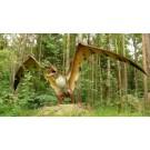 In urma cu 100 de milioane de ani, zeci de reptile zburatoare acopereau cerul Europei