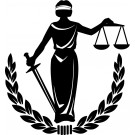 Legea calului, legea nr. 389 din 16 decembrie 2005