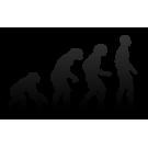 Originea si etapele evolutiei omului