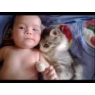 Pisica indragostita de un bebelus!