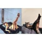 Pisici care arata ca fetele din reclame!