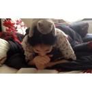 Pisicuta care adora sa citeasca!
