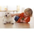 Prietenia dintre caini si copii