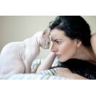 Rase de pisici hipoalergice