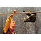 S-a redeschis singurul teatru de pisici din lume!