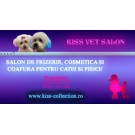 Zoo.ro recomanda Kiss Vet - salon caini in Bucuresti