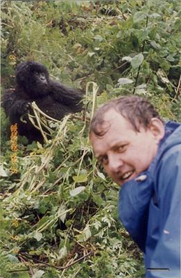om-si-gorila-de-munte